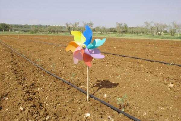 Filosofia Agriturismo Santa Maria di Leuca